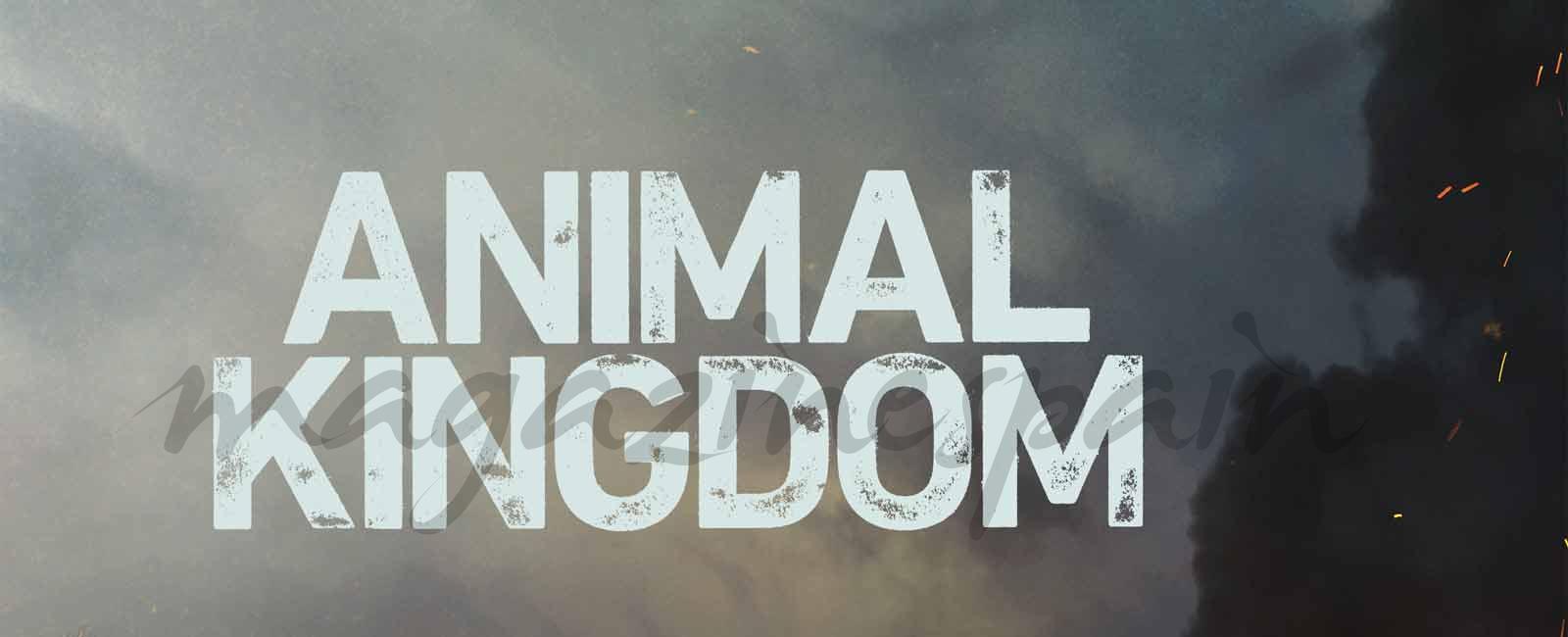 La familia puede convertirse en una jugosa trampa: 'Animal Kingdom', segunda temporada
