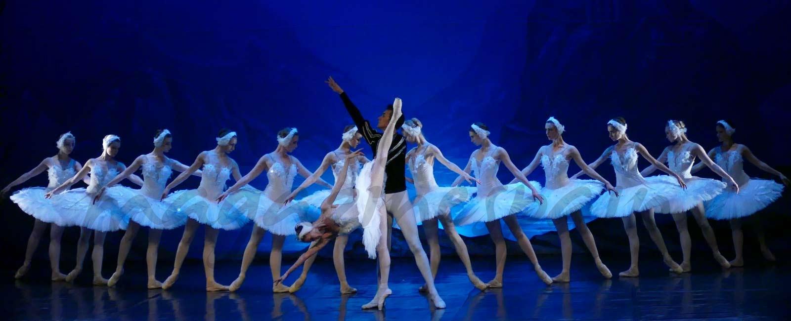 """""""El Lago de los Cisnes"""" llega hasta el Teatro Lope de Vega de Madrid"""