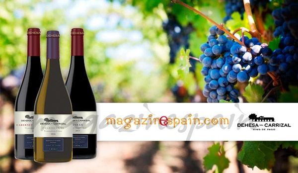 sorteo vinos