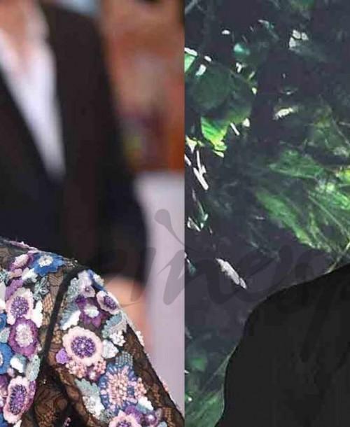 Brad Pitt y Halle Berry… ¿nueva pareja sorpresa en Hollywood?