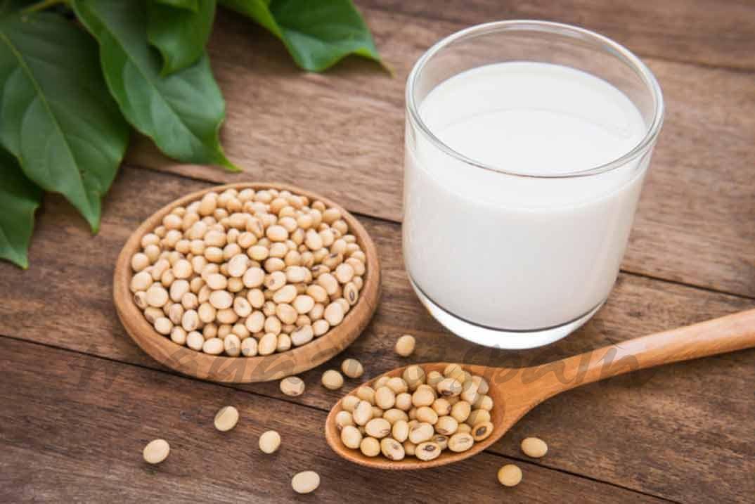 proteina de la soja