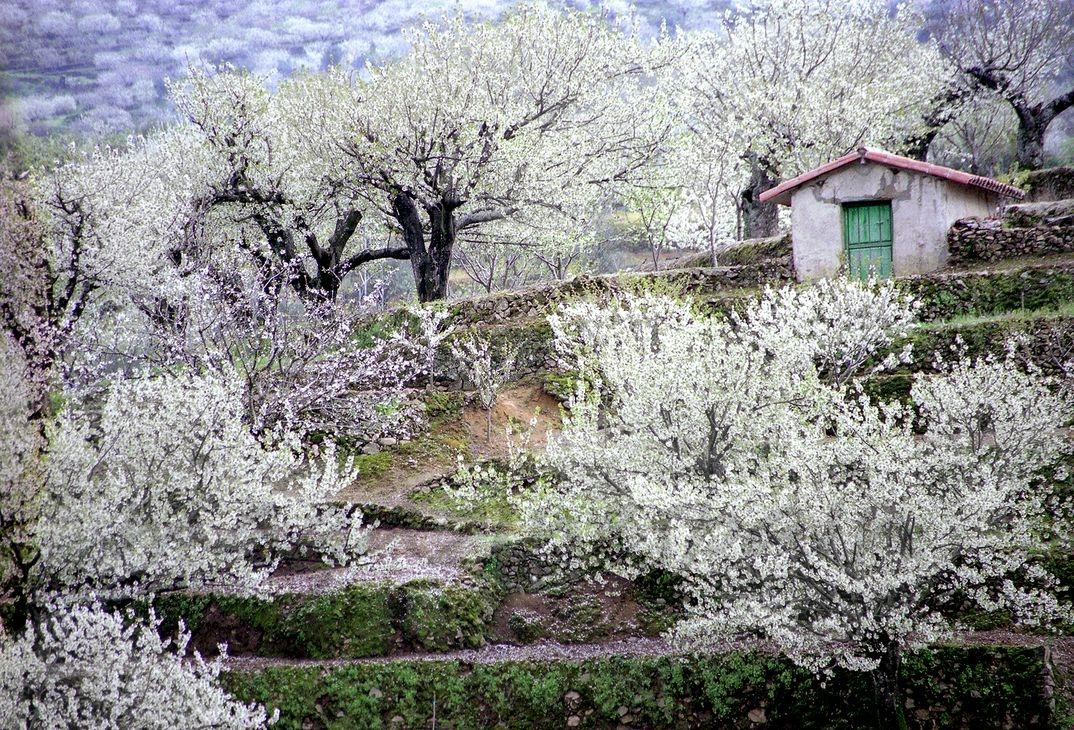 Garganta de los Infiernos - Valle del Jerte