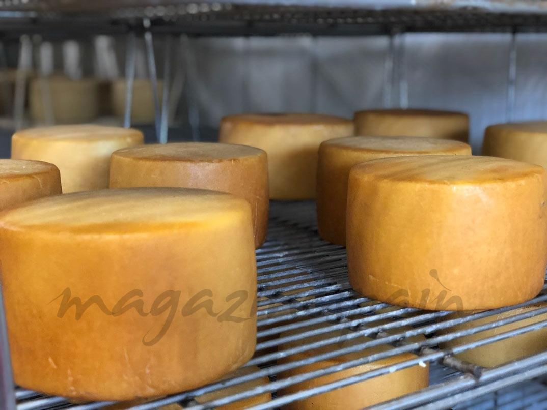 queso-idiazabal-horno