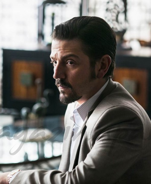 ¿Quiénes serán los protagonistas de la segunda temporada de «Narcos: México»?