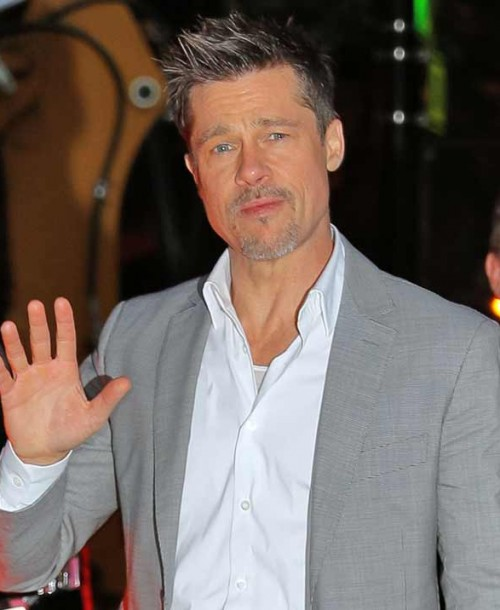 Brad Pitt cumple 55 años sin sus hijos