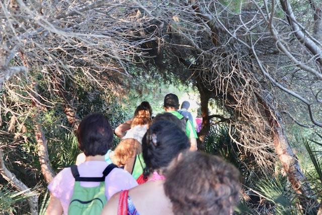 cuevas-de-arboles-alcossebre