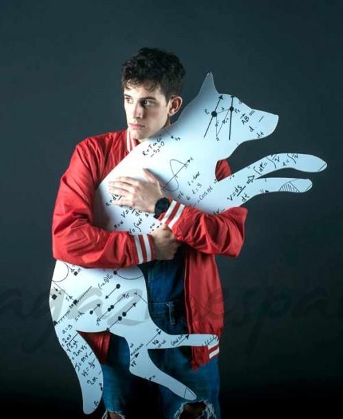 Llega a Madrid 'El curioso incidente del perro a medianoche', la obra que ha arrasado en Broadway