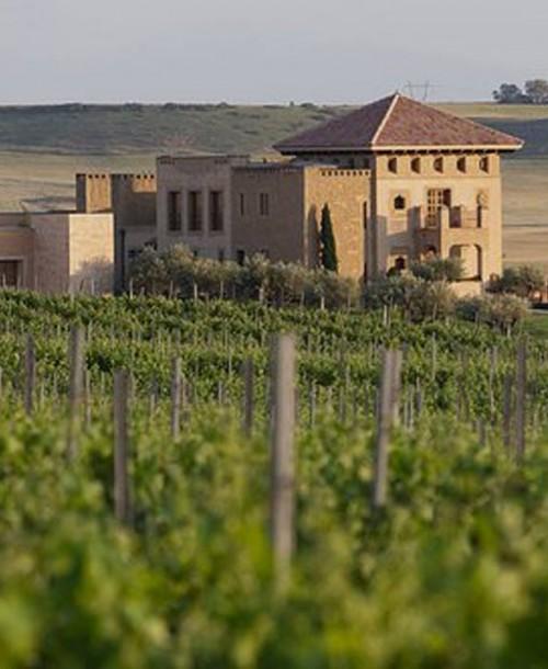 Cata maridaje con los vinos mejor puntuados de Masaveu Bodegas