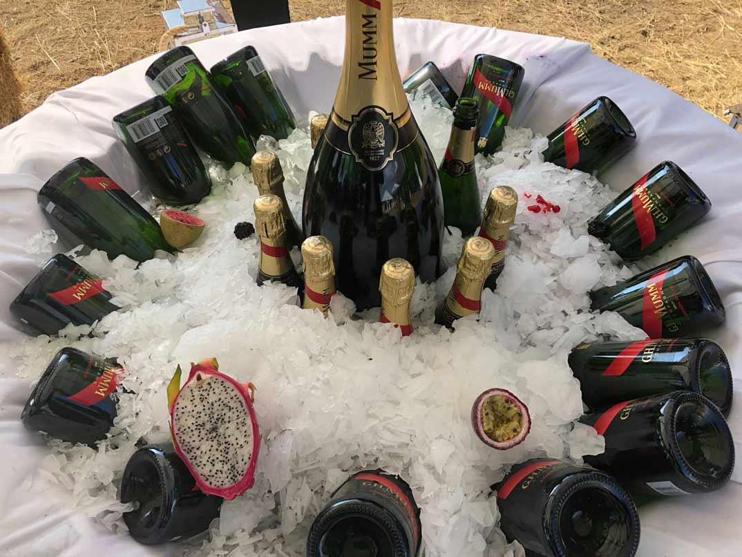 isla-champan