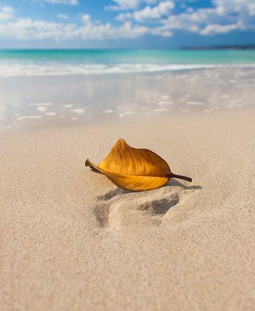 Las cinco mejores playas de Formentera