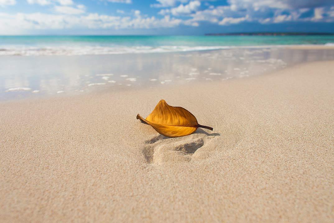 «Formentera Zen» llenará de inspiración la isla