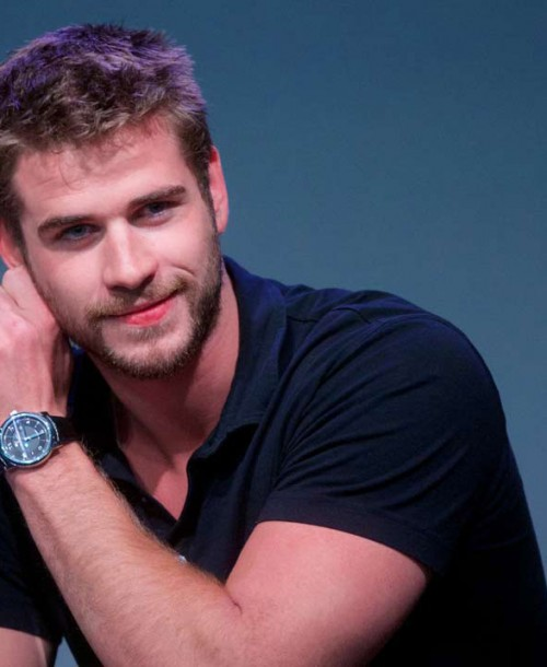 Así eran, Así son: Liam Hemsworth 2008-2018