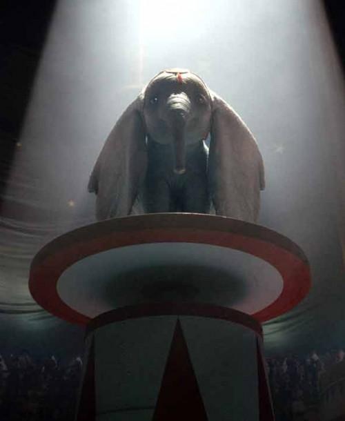 «Dumbo» – Tráiler