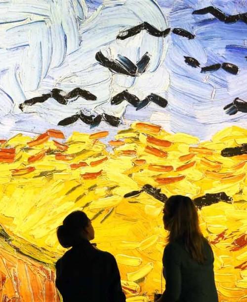 Meet Vincent van Gogh, una experiencia única