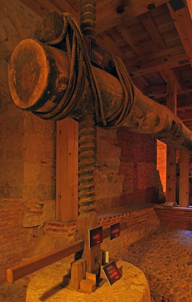 Toro-Bodega-de-la-Camara-Agraria-1