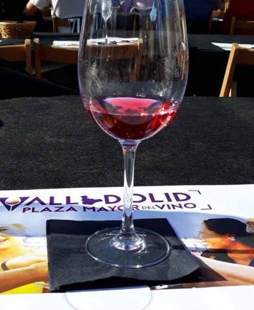 Plaza Mayor de Valladolid centro y corazón del vino