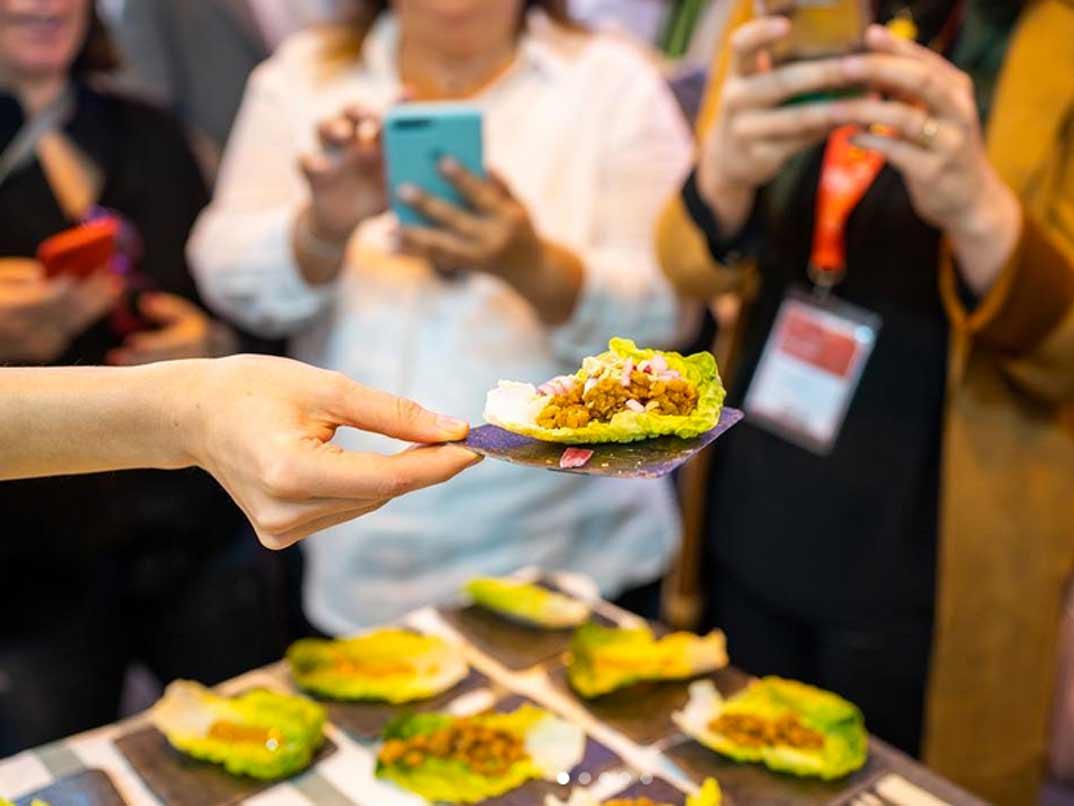 salgot-hamburguesa-vegetal
