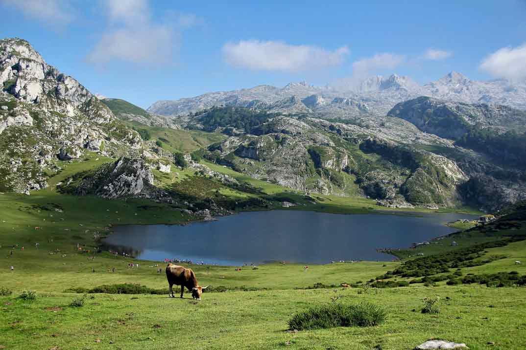 asturias-picos-europa