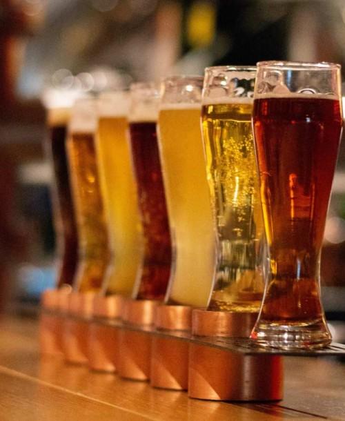 Cómo se elabora la cerveza (I)