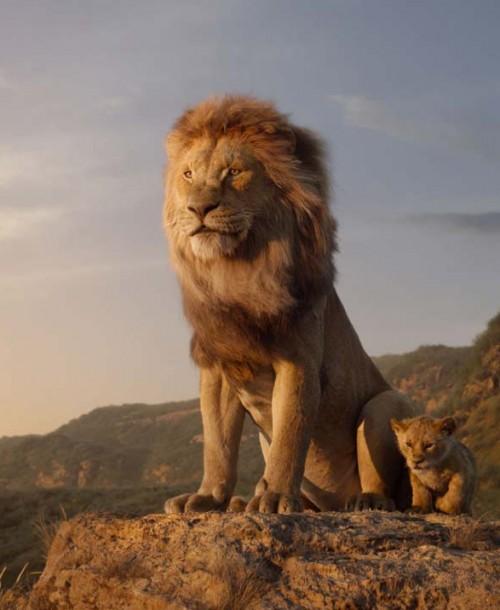 El Rey León – Tráiler