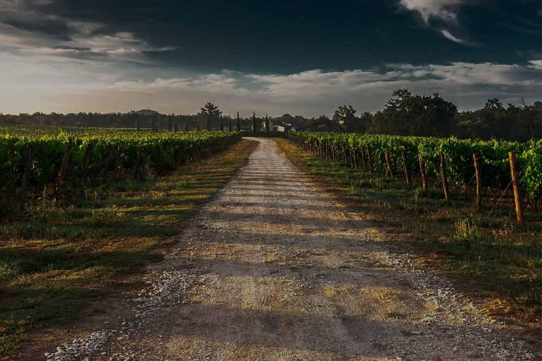 Bodega Jeromin: Familia y tradición sin salir de la Comunidad de Madrid