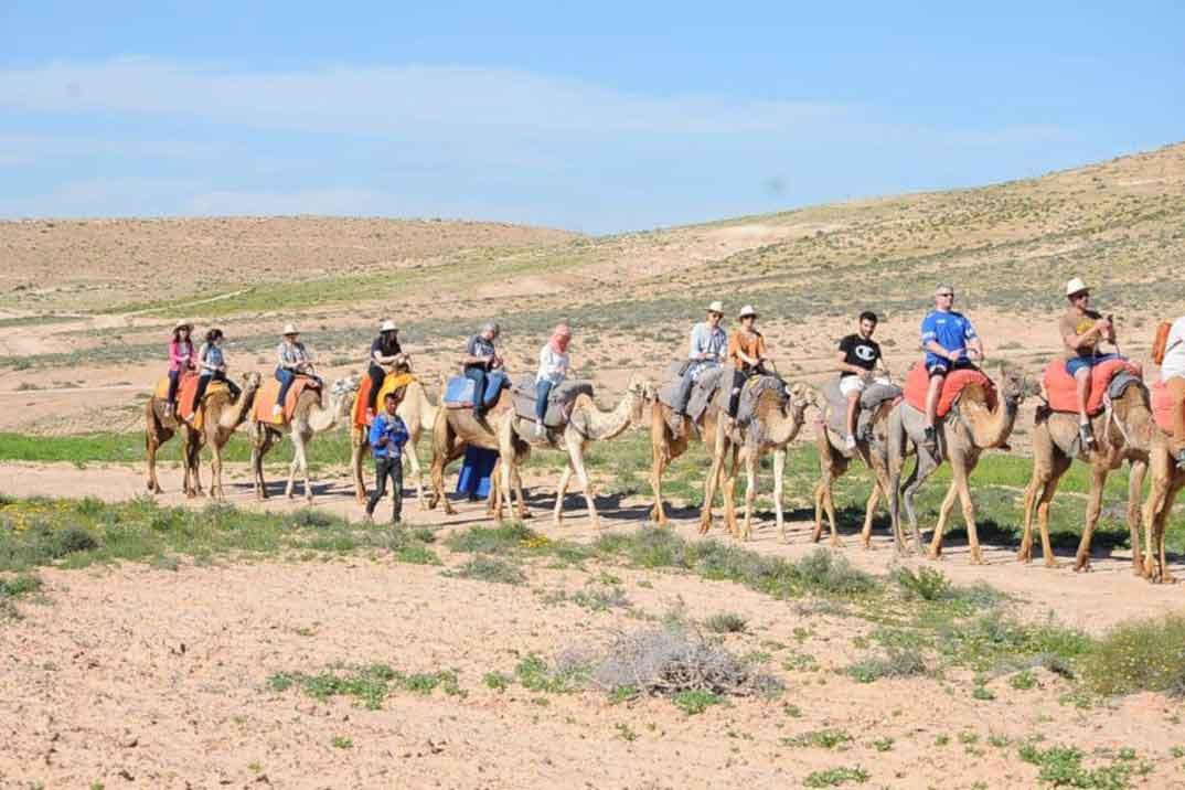 ricones-series-paseo-camello-desierto-agafay