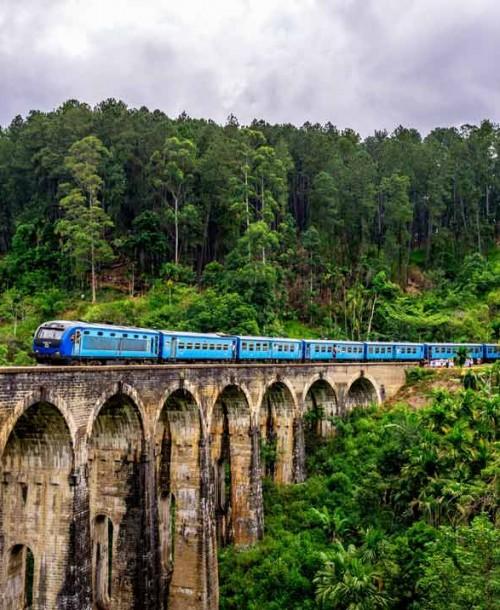 Lo mejor de Sri Lanka: tren Nuwara Eliya a Ella
