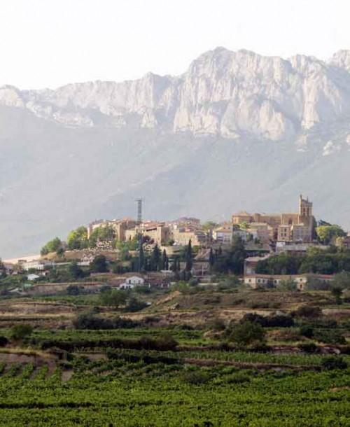 Escapada a la Rioja Alavesa: tratamientos con denominación de origen