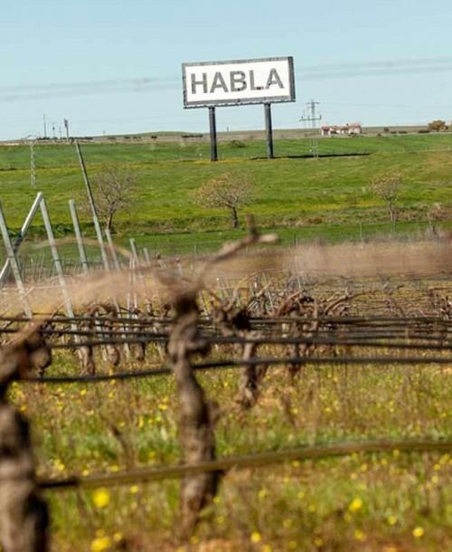 """Bodegas Habla lanza """"Habla 22"""" su nuevo vino Edición Limitada"""