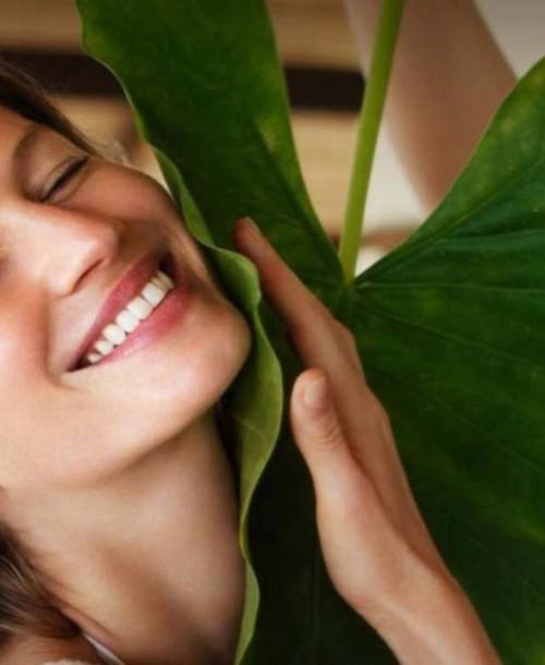 Productos imprescindibles en tu rutina facial