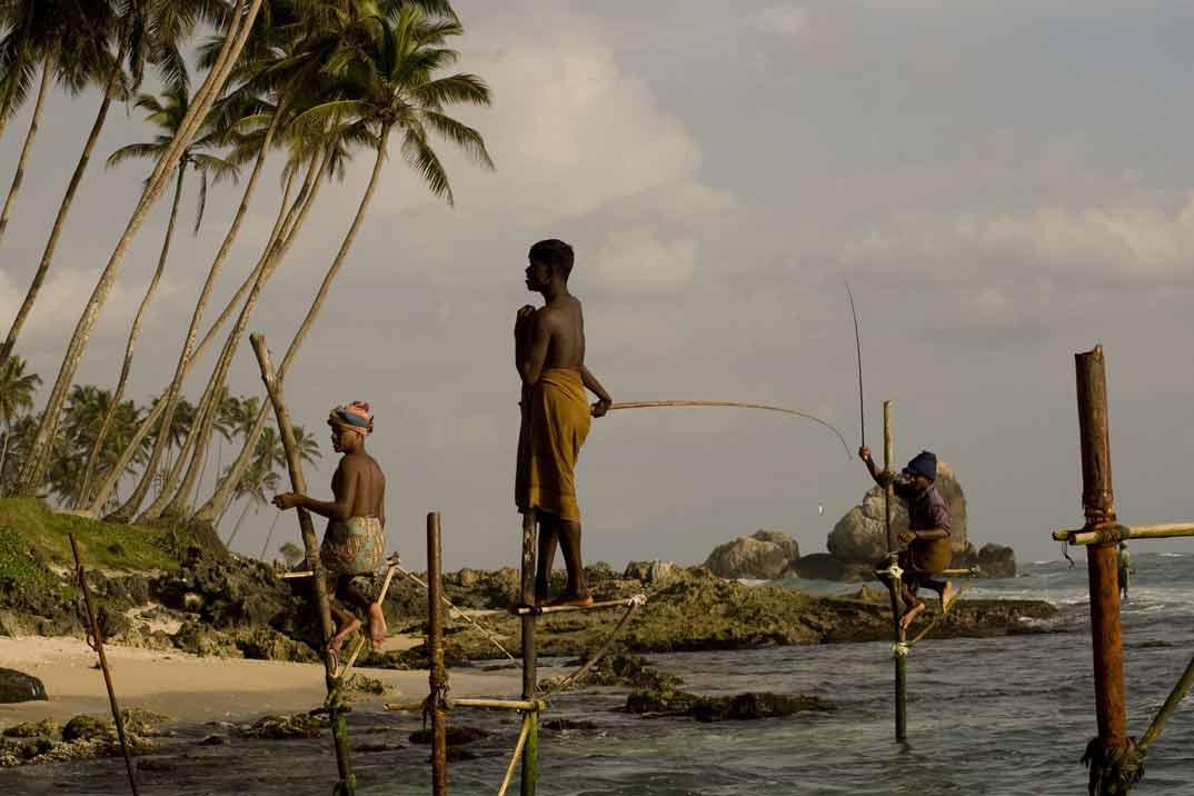 sri-lanka-pescador-zancudo