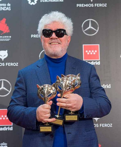 Premios Feroz 2020: La lista completa de ganadores