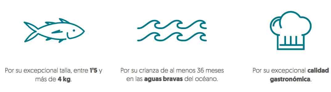 aquanaria-peces