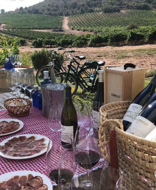 Las mejores experiencias de enoturismo en plena naturaleza en Ribera del Duero