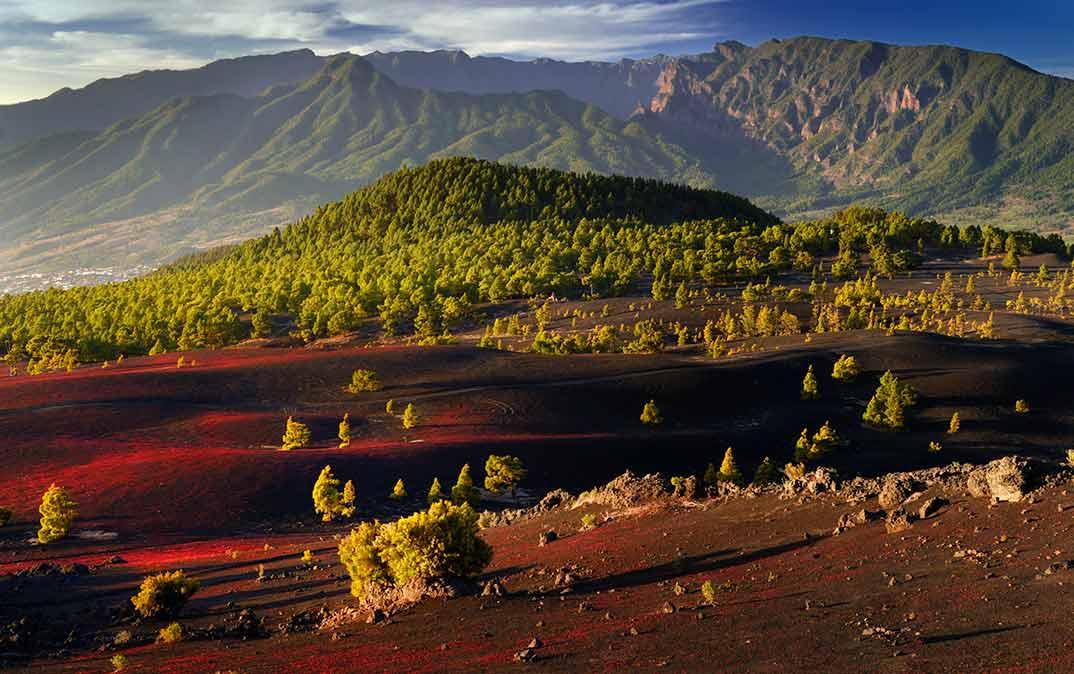 La Palma - Llanos del Jable - D.Dahncke