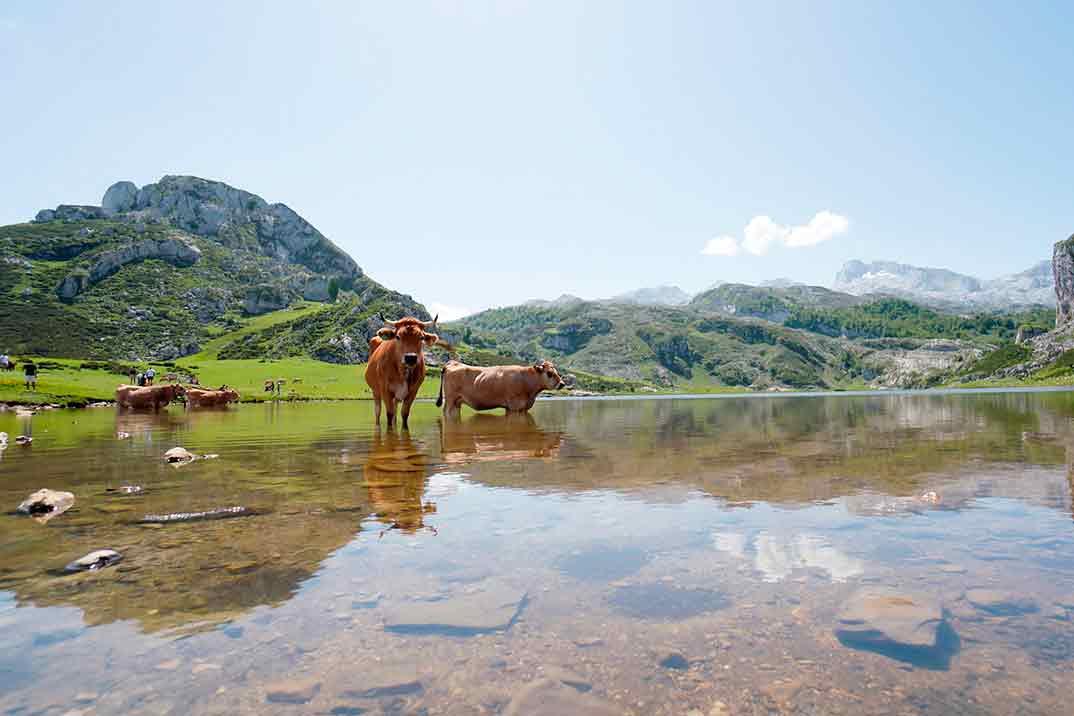 Viajeros Cuatro - Asturias © Mediaset