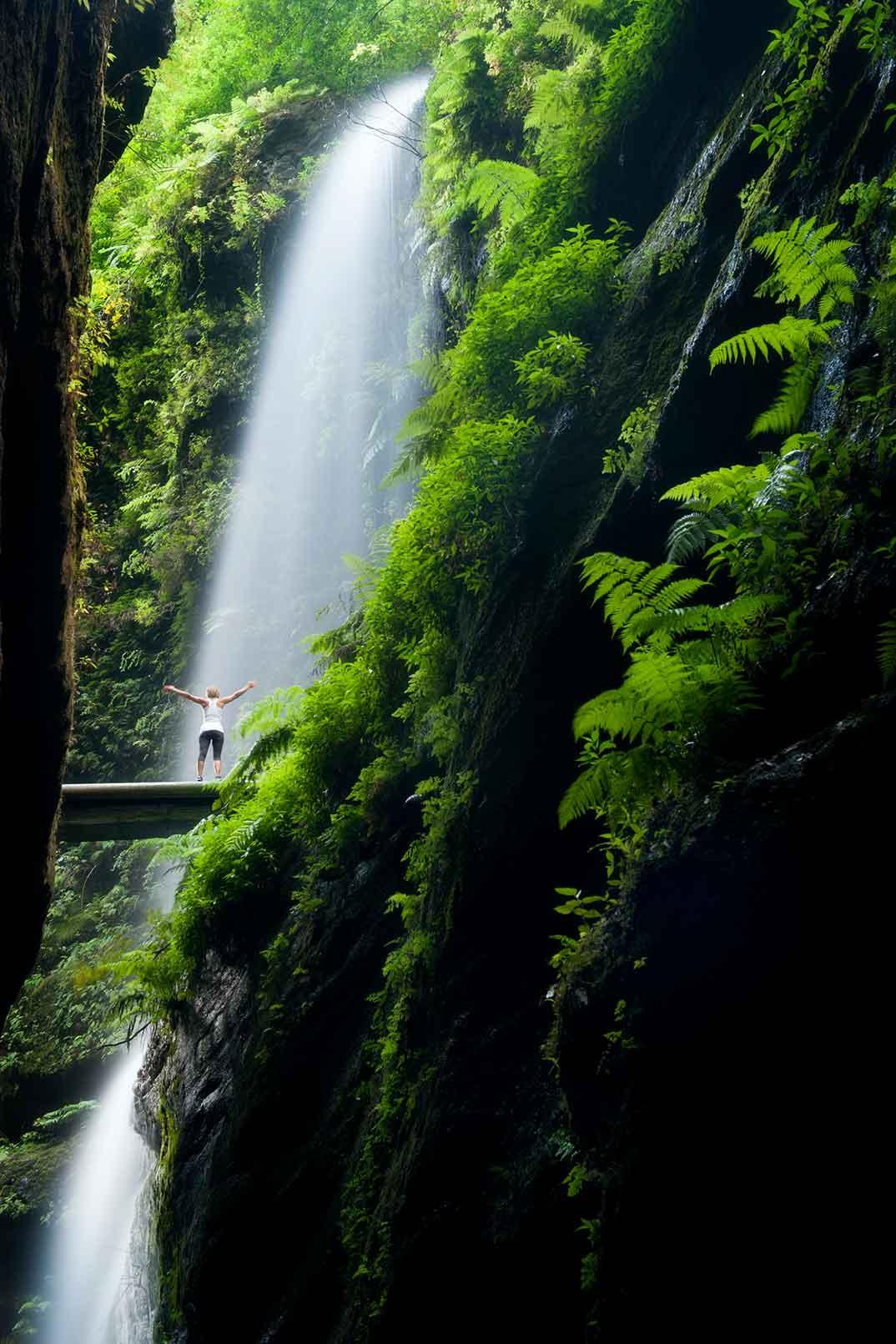 Cascada Los Tilos - La Palma © Saúl Santos