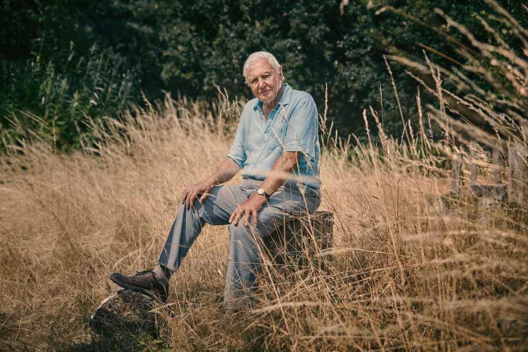 'Extinción', un nuevo documental del naturalista David Attenborough, estreno en Movistar+