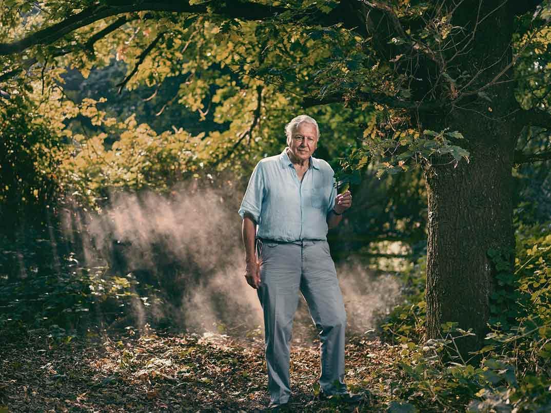 David Attenborough - Extinción © Movistar+
