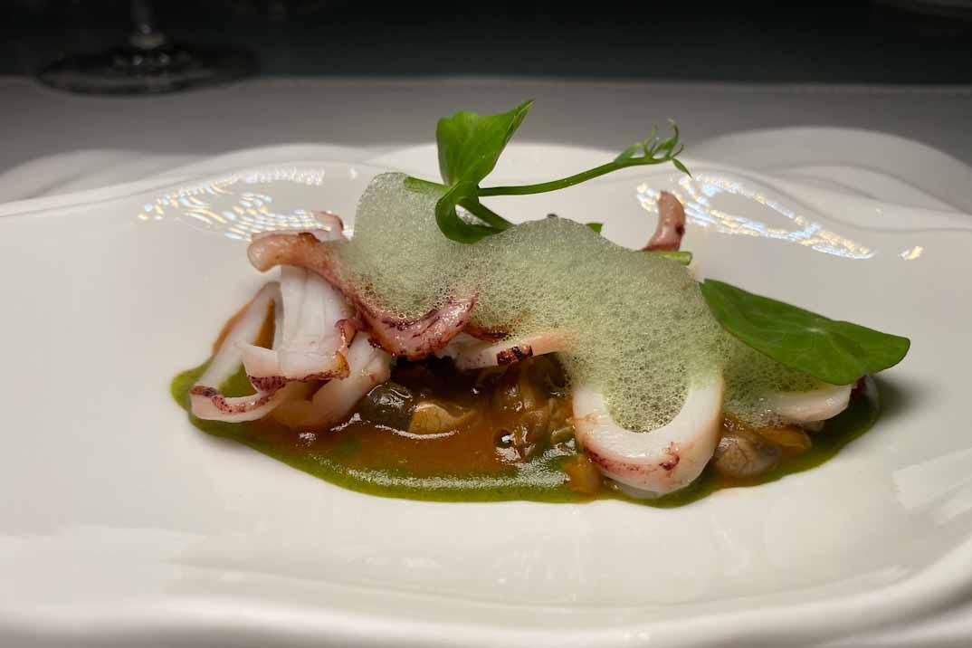 unic caracol calamar