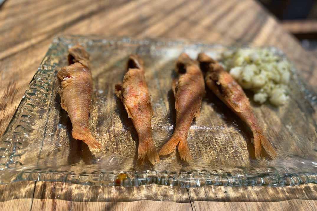 salduna salmonete