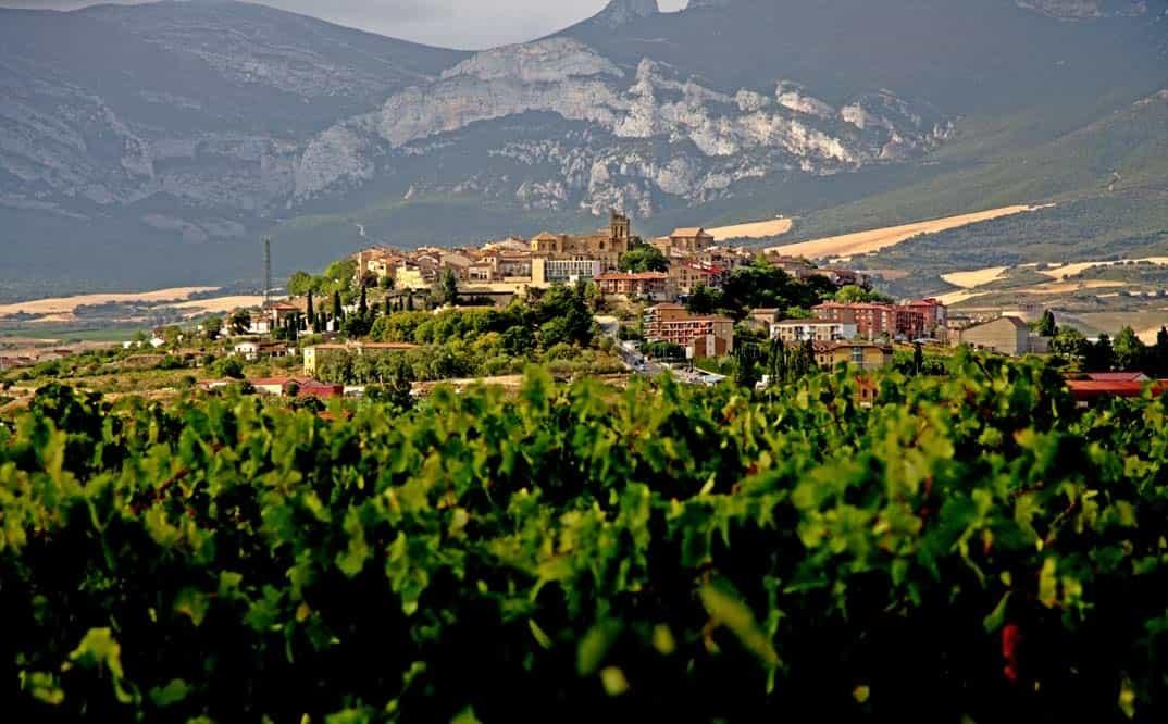 Placeres vinícolas