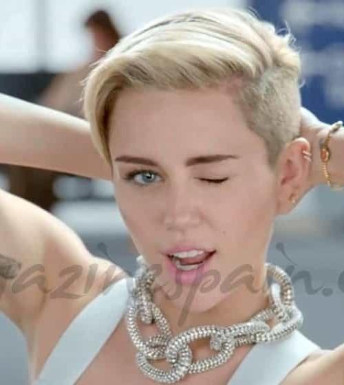 Miley Cyrus en la maleta de Redfoo