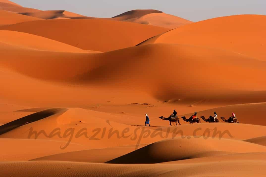 Camel-Caravan-on-Africa-s-desert-