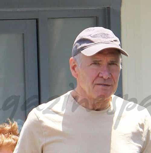 Harrison Ford vuelve a volar