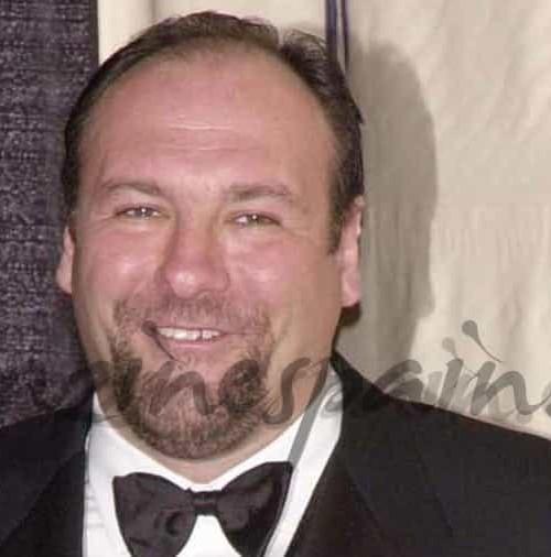 "Muere en Italia, James Galdonfini, protagonista de ""Los Soprano"""