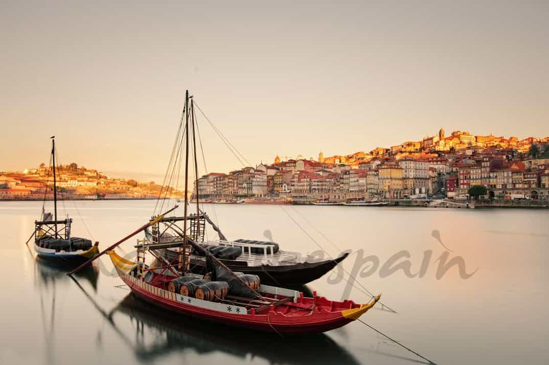 Oporto, Sabores del Douro