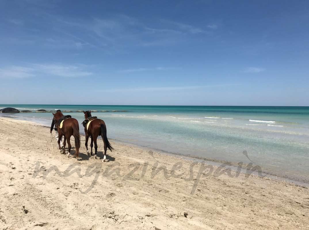Playa Djerba