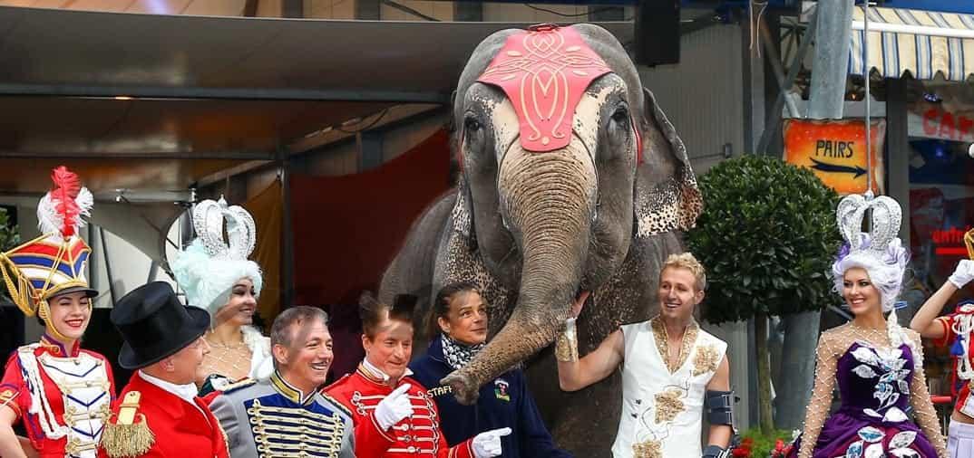 La princesa Estefanía vuelve al circo