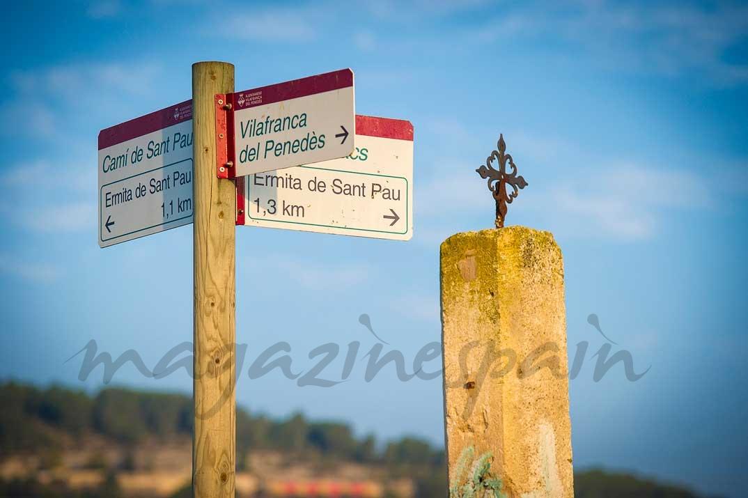 Vilafranca senderismo viñas
